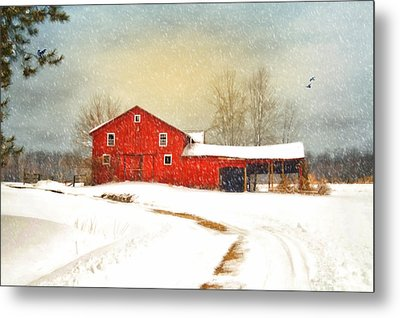 Winters Morning Metal Print by Mary Timman