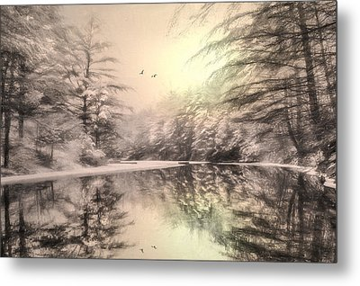 Winter's Soul Metal Print by Lori Deiter
