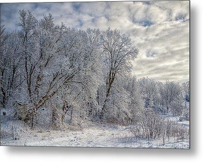 Wisconsin Winter Metal Print by Joan Carroll