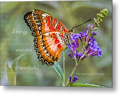 Wise And Wonderful Metal Print by Karen Stephenson