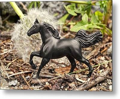 Wishing Horse Metal Print by Jeff  Gettis