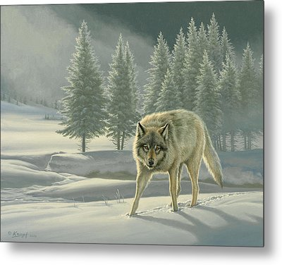 Wolf In Fog    Metal Print by Paul Krapf