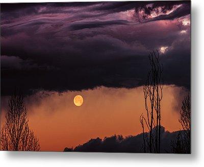 Wolf Moon Metal Print by Buffalo Fawn Photography