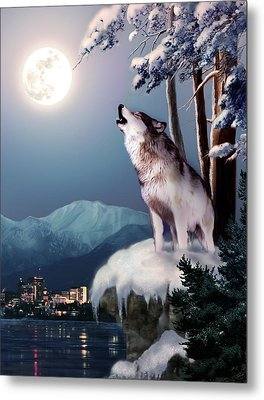 Wolf On The Doorstep Of Civilization  Metal Print by Regina Femrite