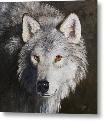 Wolf Portrait Metal Print by Crista Forest