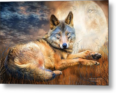 Wolf - Spirit Of Truth Metal Print by Carol Cavalaris
