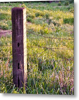 Wooden Fencepost Metal Print by Tracy Salava