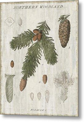 Woodland Chart V Metal Print by Sue Schlabach