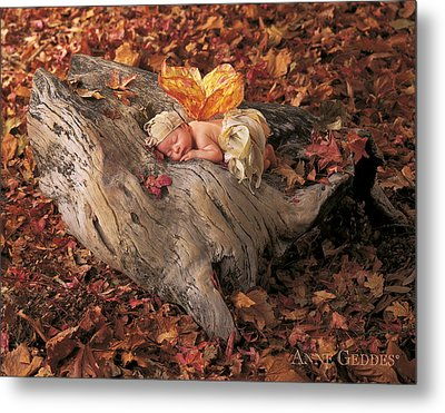 Woodland Fairy Metal Print by Anne Geddes