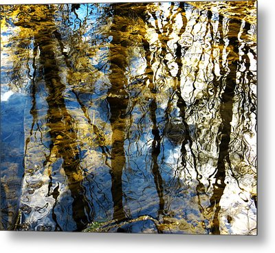 Woodland Reflections Metal Print by Shawna Rowe
