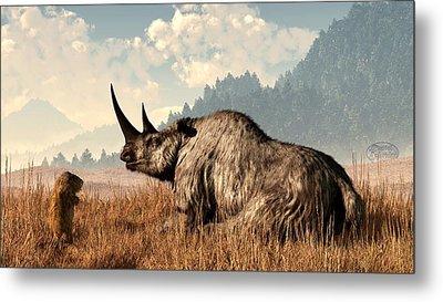 Woolly Rhino And A Marmot Metal Print by Daniel Eskridge
