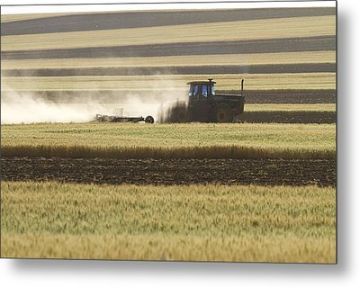Working Farmer Metal Print by James BO  Insogna
