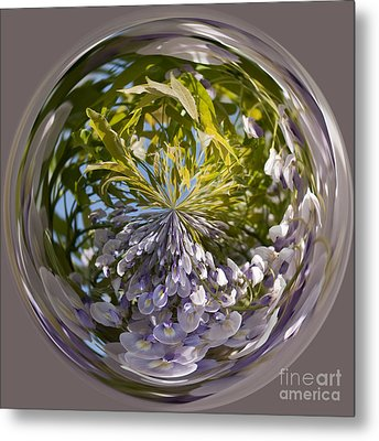 World Of Wisteria Metal Print by Anne Gilbert