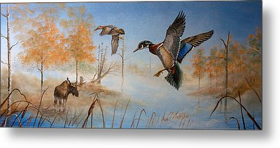 Would Duck Metal Print by Whitey Thompson