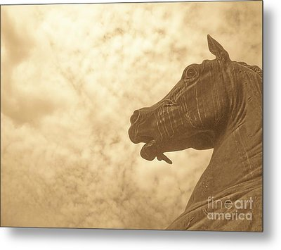 Year Of The Horse Metal Print by Kristine Nora
