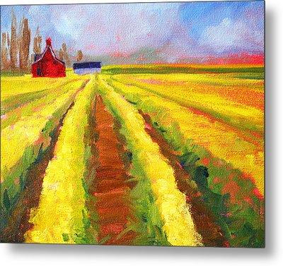 Yellow Field Landscape Metal Print by Nancy Merkle