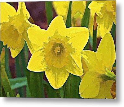 Yellow Flower Iris Metal Print by David Letts