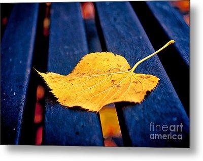 Yellow Leaf On Bench II Metal Print by Silvia Ganora