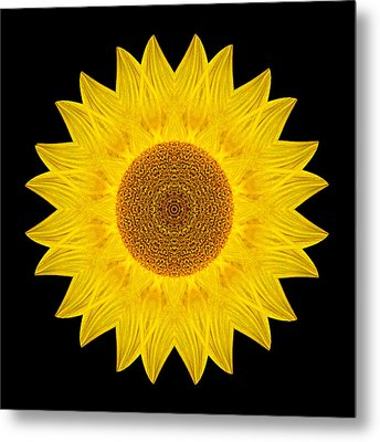 Yellow Sunflower Ix Flower Mandala Metal Print by David J Bookbinder