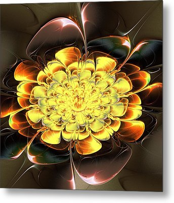 Yellow Water Lily Metal Print by Anastasiya Malakhova