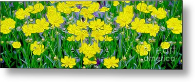 Yellow Wild Flowers Metal Print by Jon Neidert
