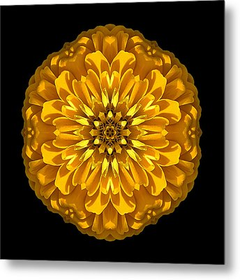 Yellow Zinnia Elegans Flower Mandala Metal Print by David J Bookbinder