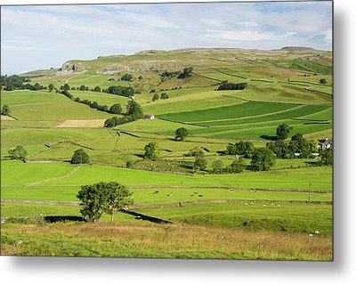 Yorkshire Dales Scenery Metal Print by Ashley Cooper