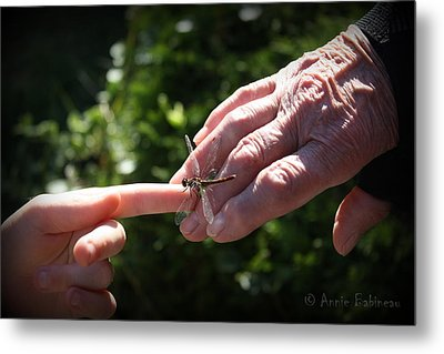 Young Dragonfly Whisperer Metal Print by Anne Babineau