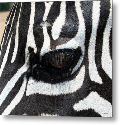 Zebra Eye Metal Print by Linda Sannuti
