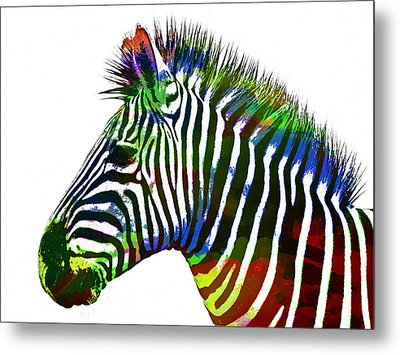 Zebra In Watercolor Paint Metal Print by Celestial Images