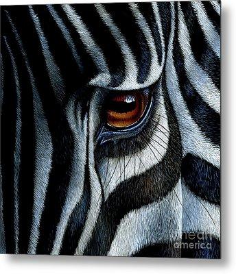 Zebra Metal Print by Jurek Zamoyski
