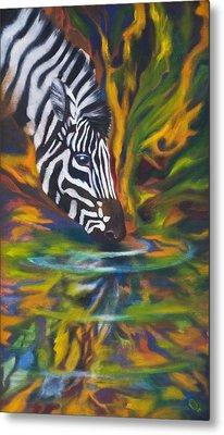 Zebra Metal Print by Kd Neeley
