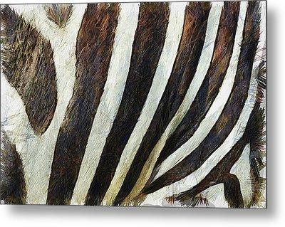 Zebra Texture Metal Print by Ayse Deniz