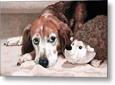 Zeppy And Lovey Metal Print by Sandra Chase