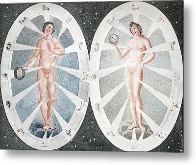 Zoadiac Adam And Eve Metal Print by Paul D Stewart