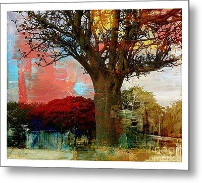 Baobab Metal Print by Fania Simon
