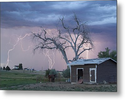 Country Horses Lightning Storm Ne Boulder County Co 76 Metal Print by James BO  Insogna
