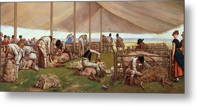 The Sheep Shearing Match Metal Print by Eyre Crowe