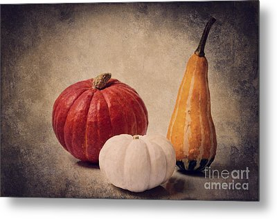 Three Pumpkins Metal Print by Angela Doelling AD DESIGN Photo and PhotoArt