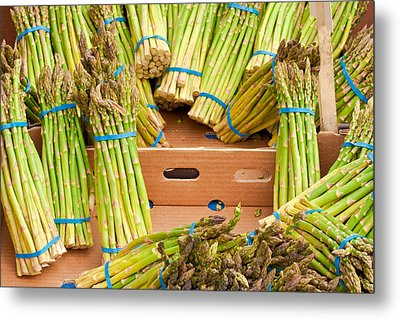 Asparagus Metal Print by Tom Gowanlock