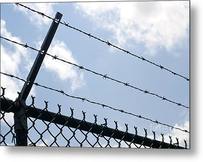 Barbed Wire Metal Print by Blink Images
