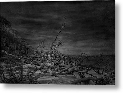 Big Talbot Island Metal Print by Mario Celzner