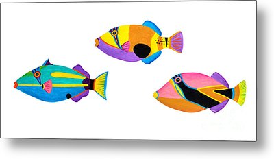 Collection Of Trigger Fishes Metal Print by Opas Chotiphantawanon