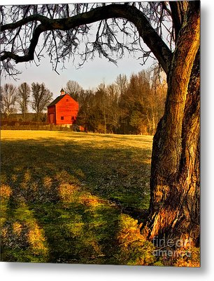 Country Life Metal Print by Susan Candelario