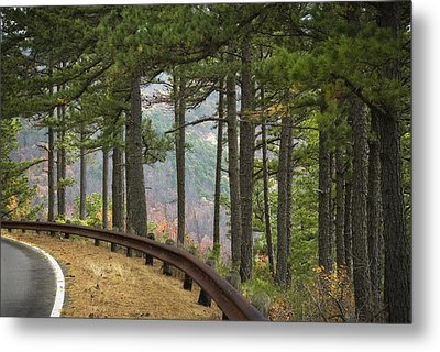 Curve In The Road Metal Print by Cindy Rubin