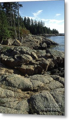 Deer Isle Shoreline Metal Print by Thomas R Fletcher