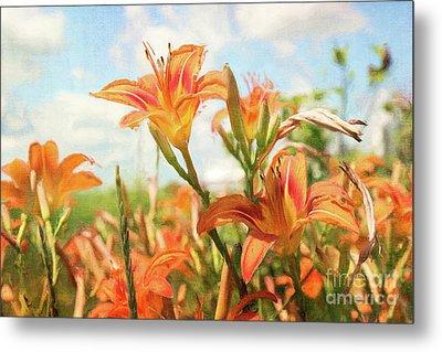 Digital Painting Of Orange Daylilies Metal Print by Sandra Cunningham