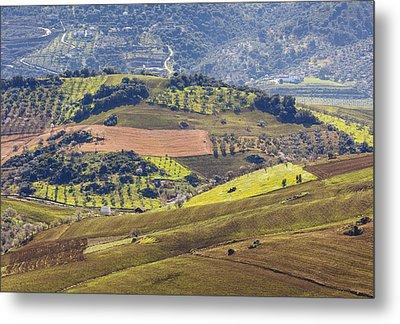 Farmland Near Casabermeja, Spain. Metal Print by Ken Welsh