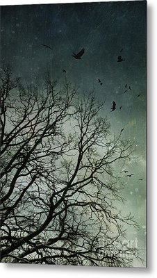 Flock Of Birds Flying Over Bare Wintery Trees Metal Print by Sandra Cunningham