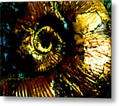 Fossil Metal Print by Howard Perry